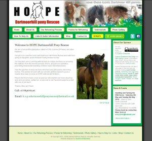 HOPE Dartmoor Hill Pony Rescue
