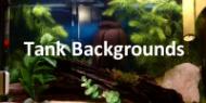 Dream Aquarium Backgrounds