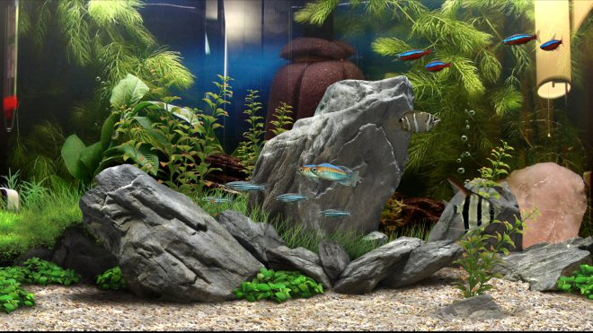 Aquarium Background Example 2 (Behind 3D rocks)